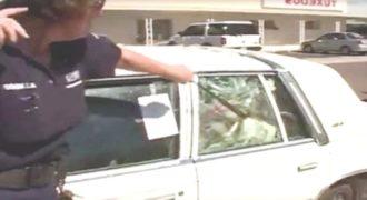 Είδε 7 σκυλιά κλειδωμένα στο αυτοκίνητο μέσα στη ζέστη μια γυναίκα αστυνομικός και η αντίδρασή της, αξίζει συγχαρητήρια!