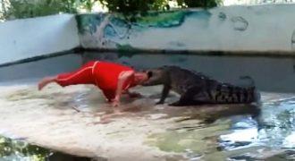 Κροκόδειλος άρπαξε από το κεφάλι φύλακα ζωολογικού κήπου  (Video)