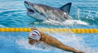 Οργή για τον αγώνα του Φελπς με τον καρχαρία – Νίκησε ο καρχαρίας αλλά καταγγέλλουν απάτη