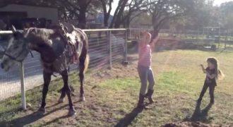Δύο Κορίτσια άρχισαν να χορεύουν μπροστά σε ένα άλογο και τότε αρχίζει να χορεύει με τον δικό του ρυθμό