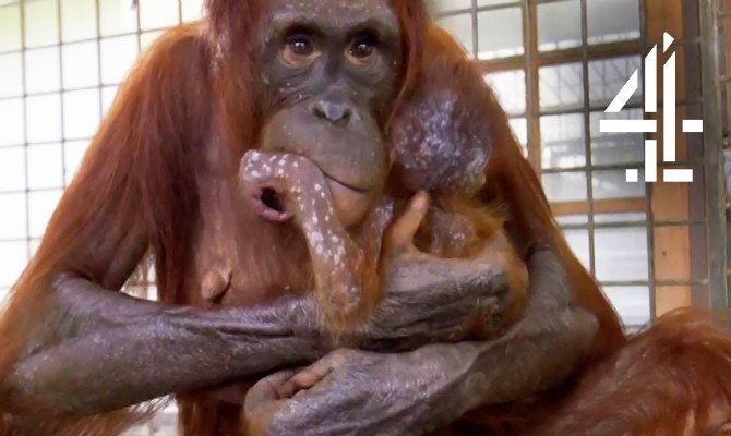 mother-reunited-with-her-baby